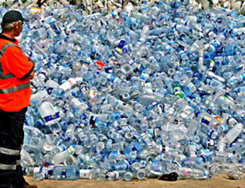 PET Bottle Recycling